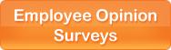 Employee Opinion Surveys